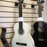 ORTEGA Guitares Cordes Nylon Family Série R121WH